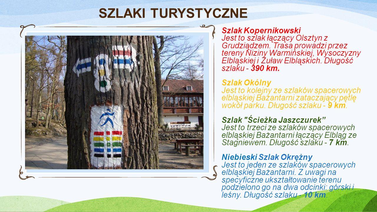 REKREACJA W BAŻANTARNI Park linowy to konstrukcja zamontowana na drzewach, która służy do bezpiecznej zabawy na wysokości.