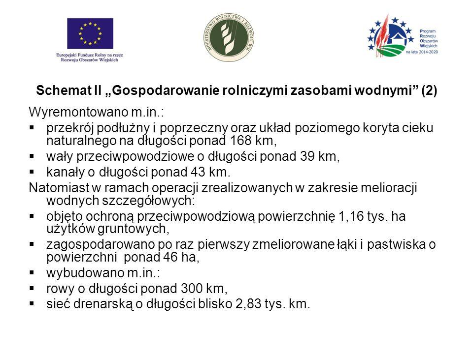 """Schemat II """"Gospodarowanie rolniczymi zasobami wodnymi (2) Wyremontowano m.in.:  przekrój podłużny i poprzeczny oraz układ poziomego koryta cieku naturalnego na długości ponad 168 km,  wały przeciwpowodziowe o długości ponad 39 km,  kanały o długości ponad 43 km."""