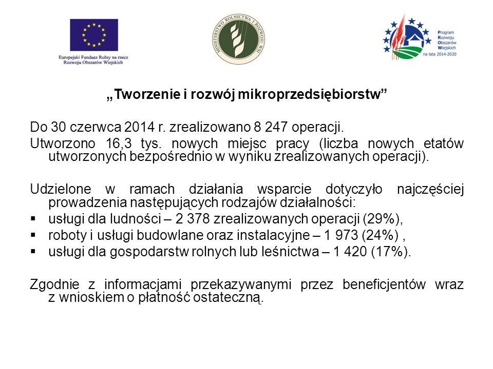 """""""Tworzenie i rozwój mikroprzedsiębiorstw Do 30 czerwca 2014 r."""