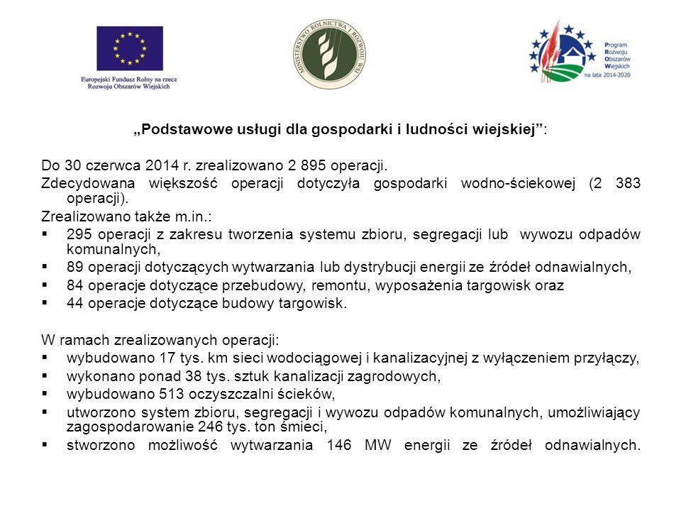 """""""Podstawowe usługi dla gospodarki i ludności wiejskiej : Do 30 czerwca 2014 r."""