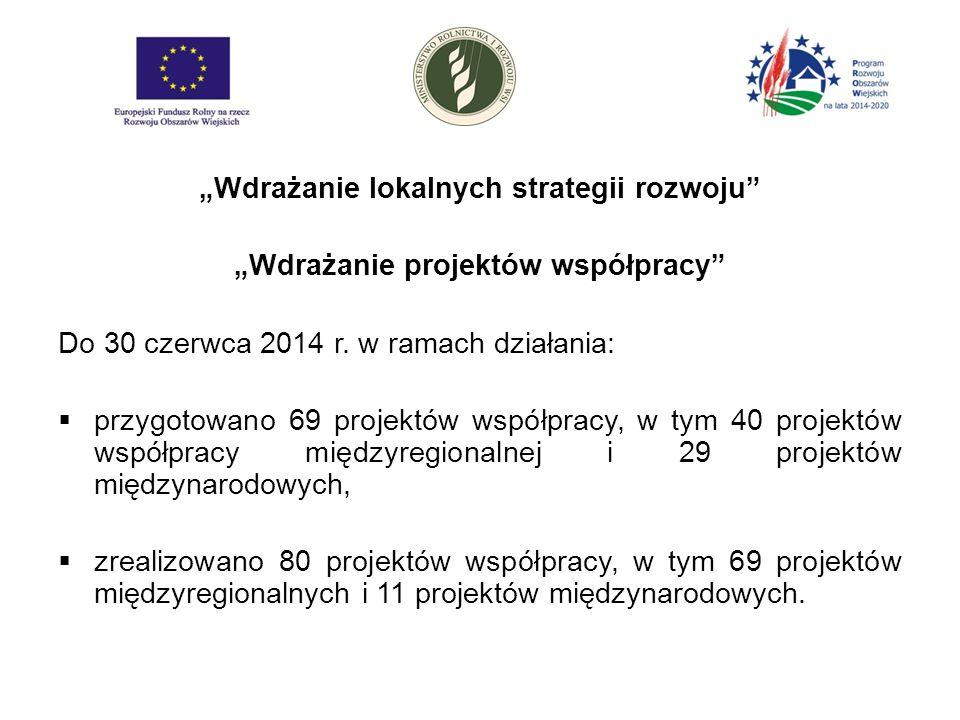 """""""Wdrażanie lokalnych strategii rozwoju """"Wdrażanie projektów współpracy Do 30 czerwca 2014 r."""