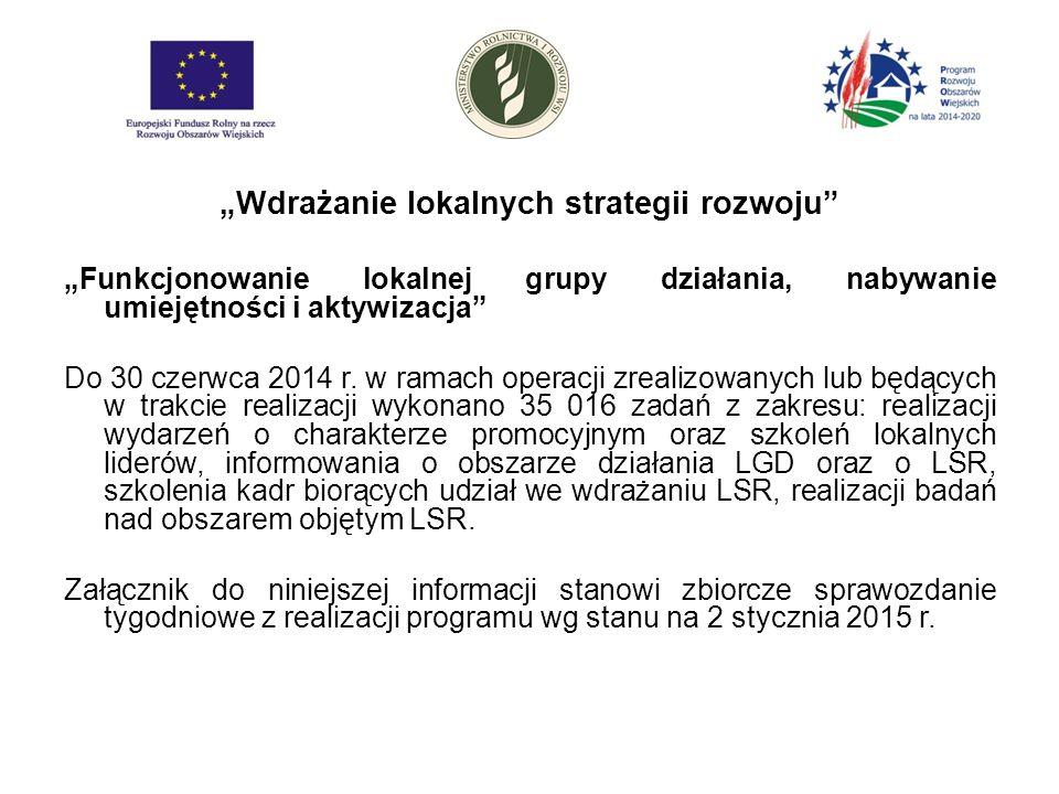 """""""Wdrażanie lokalnych strategii rozwoju """"Funkcjonowanie lokalnej grupy działania, nabywanie umiejętności i aktywizacja Do 30 czerwca 2014 r."""