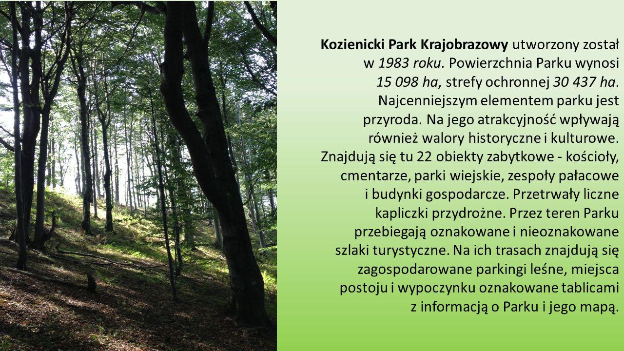 Kozienicki Park Krajobrazowy utworzony został w 1983 roku.