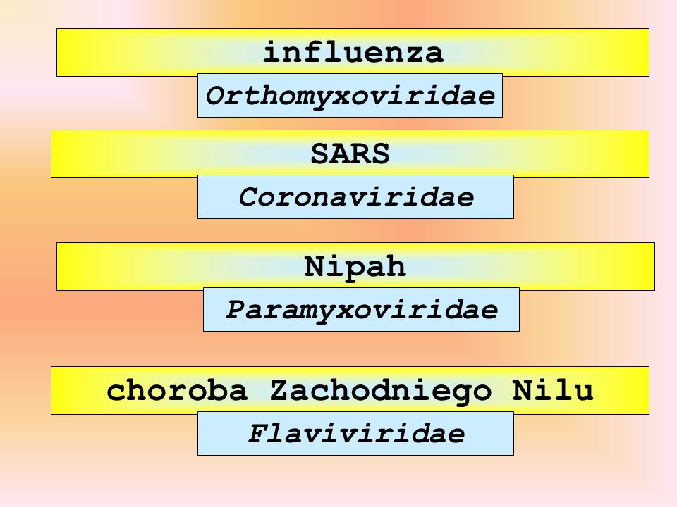 influenza SARS choroba Zachodniego Nilu Orthomyxoviridae Coronaviridae Flaviviridae Nipah Paramyxoviridae