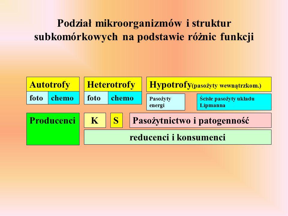 Autotrofy fotochemo Heterotrofy fotochemo Producenci reducenci i konsumenci Hypotrofy (pasożyty wewnątrzkom.) Pasożytnictwo i patogennośćKS Pasożyty energi Ścisłe pasożyty układu Lipmanna Podział mikroorganizmów i struktur subkomórkowych na podstawie różnic funkcji