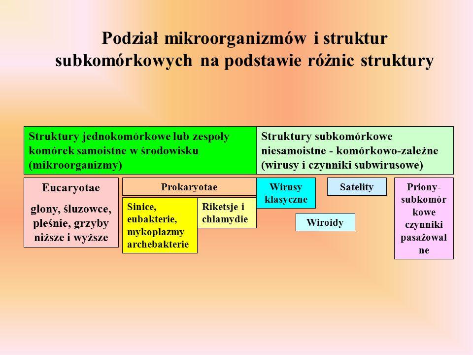 Podział mikroorganizmów i struktur subkomórkowych na podstawie różnic struktury Struktury jednokomórkowe lub zespoły komórek samoistne w środowisku (mikroorganizmy) Struktury subkomórkowe niesamoistne - komórkowo-zależne (wirusy i czynniki subwirusowe) Eucaryotae glony, śluzowce, pleśnie, grzyby niższe i wyższe Prokaryotae Sinice, eubakterie, mykoplazmy archebakterie Riketsje i chlamydie Wirusy klasyczne Wiroidy SatelityPriony- subkomór kowe czynniki pasażowal ne