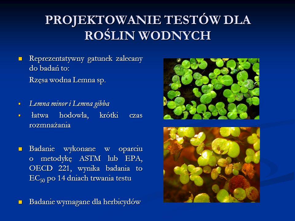 PROJEKTOWANIE TESTÓW DLA ROŚLIN WODNYCH Reprezentatywny gatunek zalecany do badań to: Reprezentatywny gatunek zalecany do badań to: Rzęsa wodna Lemna sp.