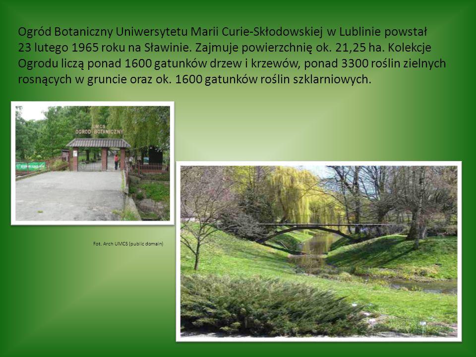 Ogród Botaniczny Uniwersytetu Marii Curie-Skłodowskiej w Lublinie powstał 23 lutego 1965 roku na Sławinie.