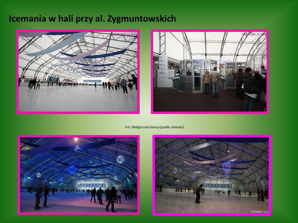 Icemania w hali przy al. Zygmuntowskich