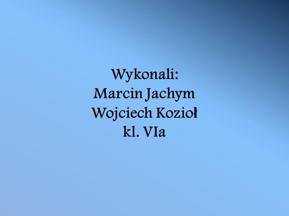 Wykonali: Marcin Jachym Wojciech Kozio ł kl. VIa