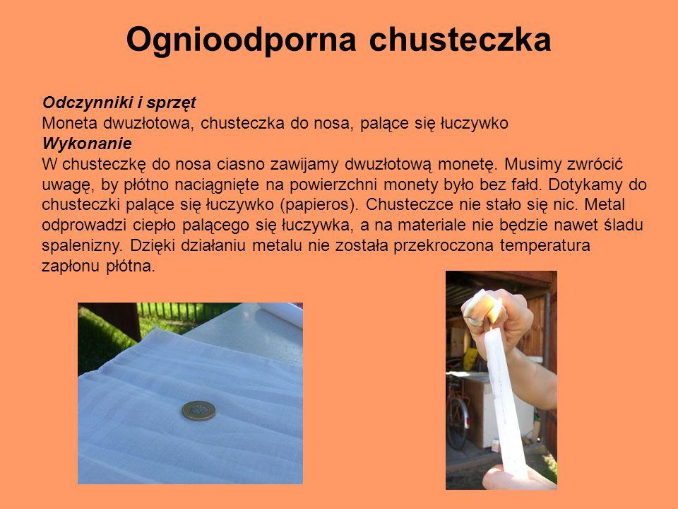 Bibliografia -http://www.miasto.zgierz.pl/gim1/index.html - Samodzielnie przeprowadzone doświadczenia