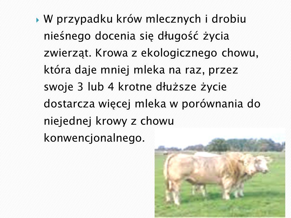  W przypadku krów mlecznych i drobiu nieśnego docenia się długość życia zwierząt.