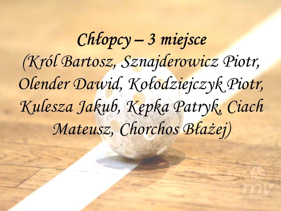 Chłopcy – 3 miejsce (Król Bartosz, Sznajderowicz Piotr, Olender Dawid, Kołodziejczyk Piotr, Kulesza Jakub, Kępka Patryk, Ciach Mateusz, Chorchos Błażej)
