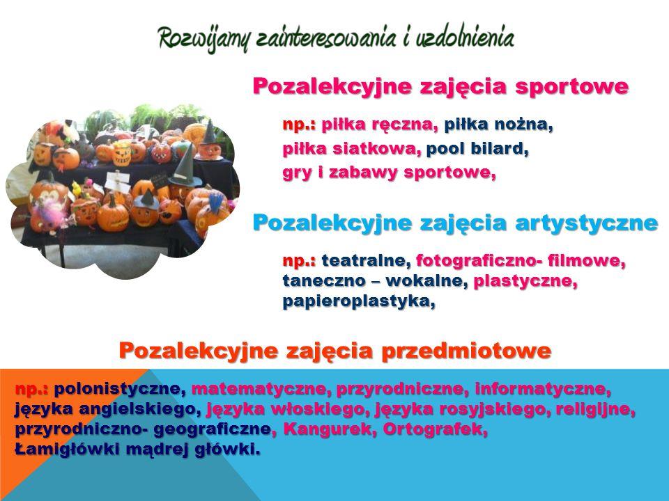 Pozalekcyjne zajęcia sportowe np.: piłka ręczna, piłka nożna, piłka siatkowa, pool bilard, gry i zabawy sportowe, Pozalekcyjne zajęcia artystyczne np.