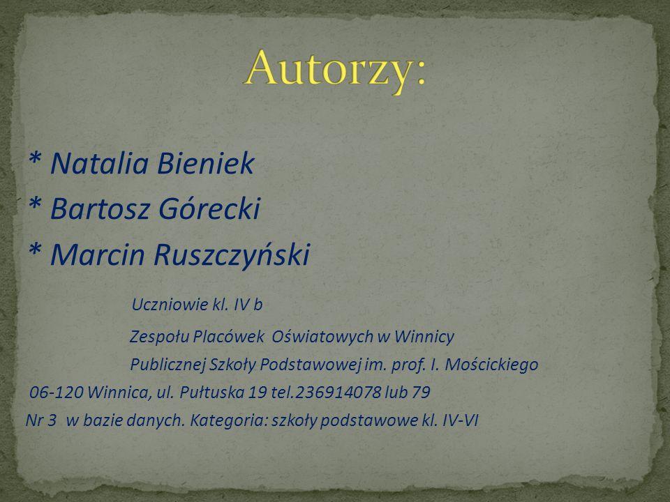 * Natalia Bieniek * Bartosz Górecki * Marcin Ruszczyński Uczniowie kl.