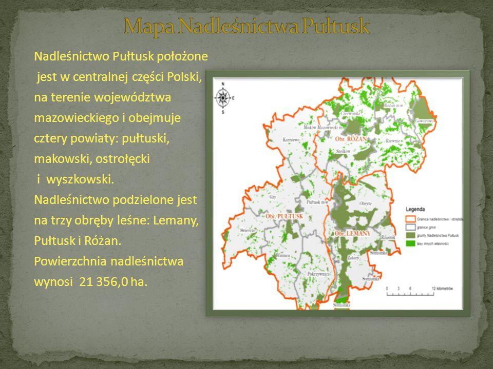 Nadleśnictwo Pułtusk położone jest w centralnej części Polski, na terenie województwa mazowieckiego i obejmuje cztery powiaty: pułtuski, makowski, ostrołęcki i wyszkowski.