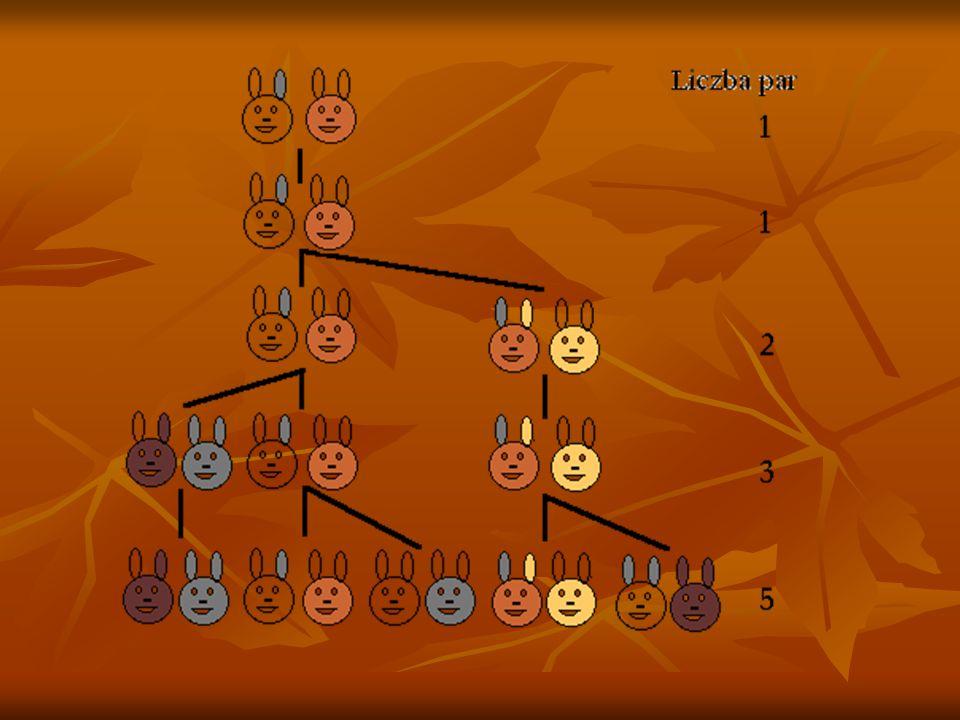 ZADANIE FIBONACIEGO Ile par królików może spłodzić jedna para w ciągu roku, JEŚLI: Ile par królików może spłodzić jedna para w ciągu roku, JEŚLI:  ka