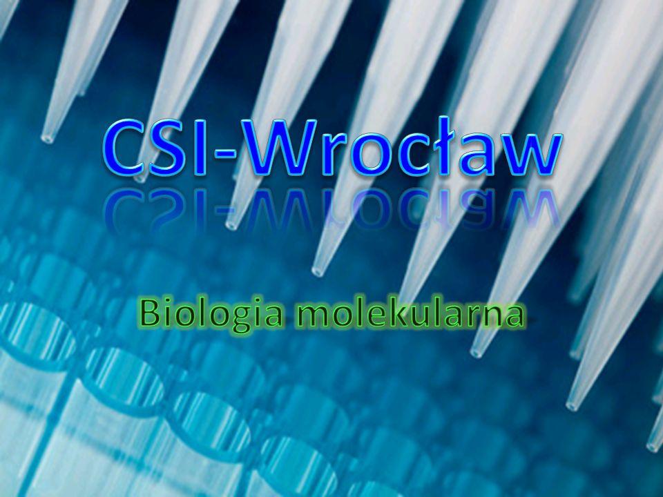 Po zabarwieniu i umieszczeniu w żelu poliakrylamidowym (służącym do elektroforezy) próbki powstałej po reakcji PCR można porównać materiały genetyczne kilku osób, a konkretnie ich powielone fragmenty.