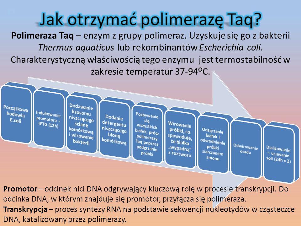 Ligacja -proces połączenia dwóch końców nici DNA za pomocą enzymu ligazy.