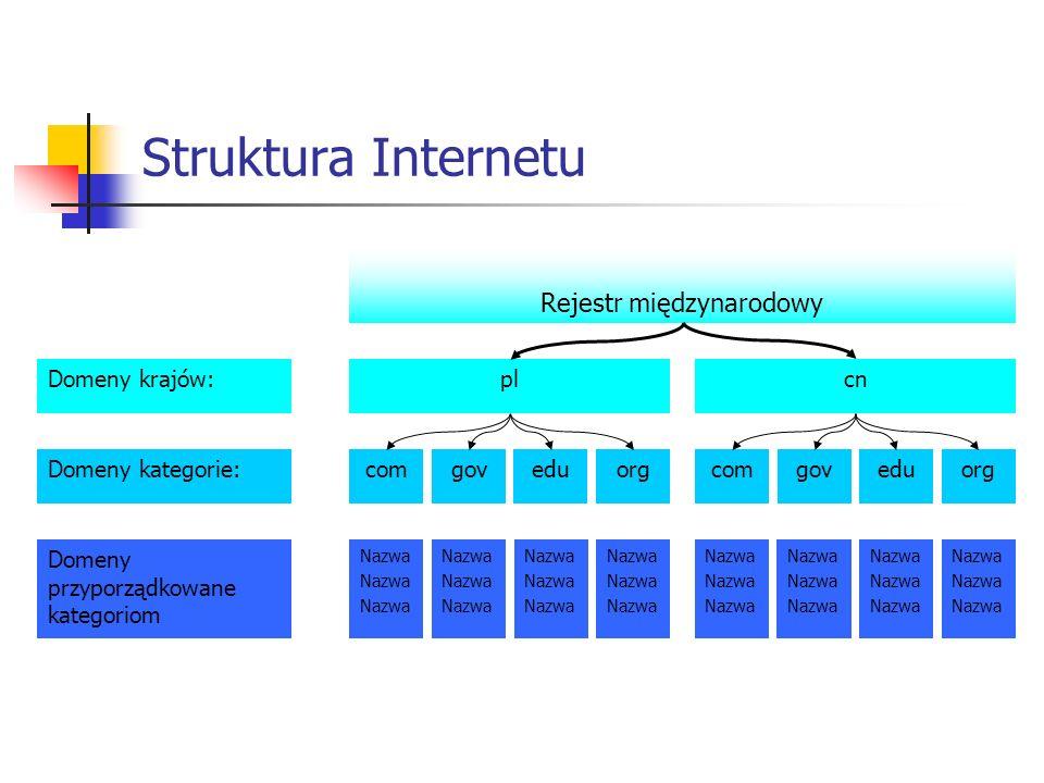 Struktura Internetu Domeny krajów: Domeny kategorie: Domeny przyporządkowane kategoriom Rejestr międzynarodowy pl comgoveduorg cn comgoveduorg Nazwa