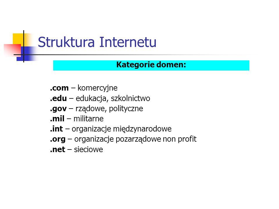 Struktura Internetu.com – komercyjne.edu – edukacja, szkolnictwo.gov – rządowe, polityczne.mil – militarne.int – organizacje międzynarodowe.org – organizacje pozarządowe non profit.net – sieciowe Kategorie domen: