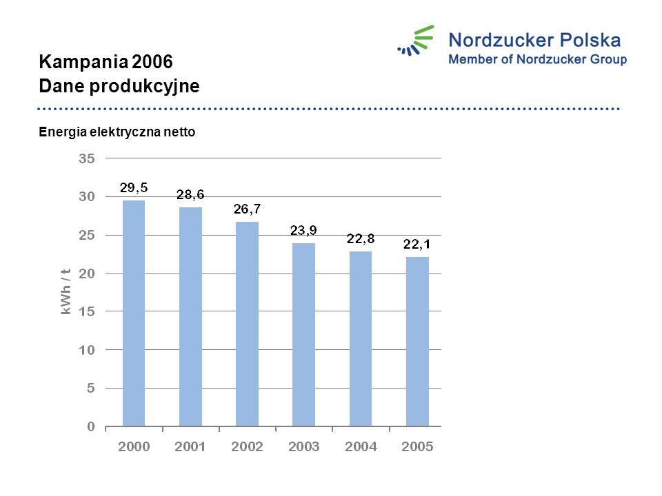 Kampania 2006 Dane produkcyjne Energia elektryczna netto