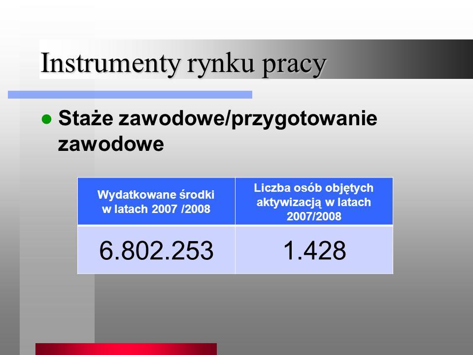 Instrumenty rynku pracy Staże zawodowe/przygotowanie zawodowe Wydatkowane środki w latach 2007 /2008 Liczba osób objętych aktywizacją w latach 2007/2008 6.802.2531.428