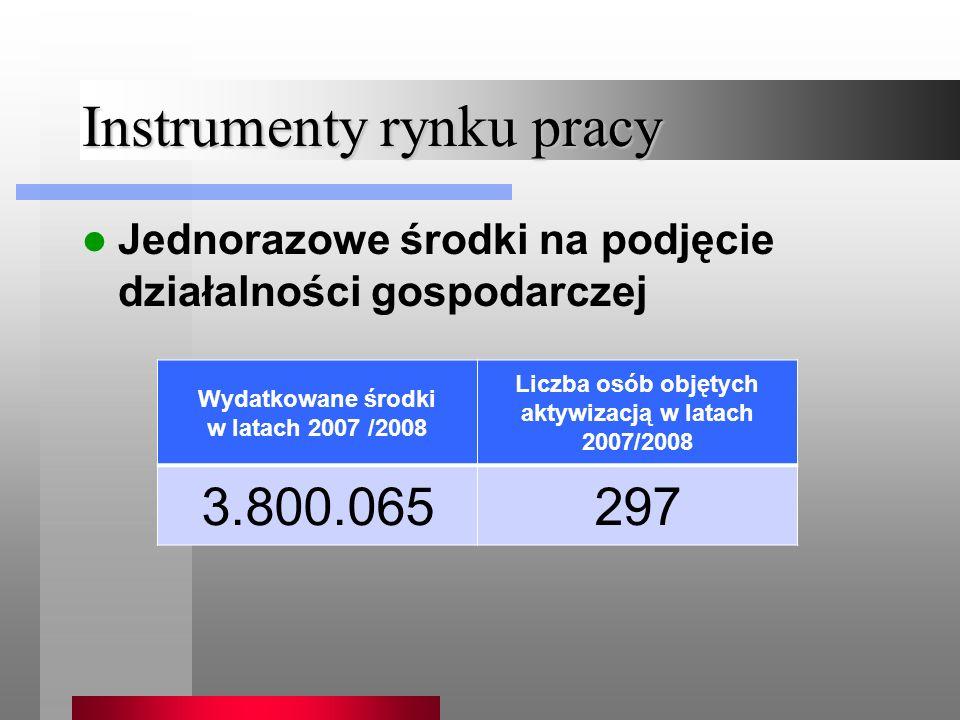 Instrumenty rynku pracy Jednorazowe środki na podjęcie działalności gospodarczej Wydatkowane środki w latach 2007 /2008 Liczba osób objętych aktywizacją w latach 2007/2008 3.800.065297