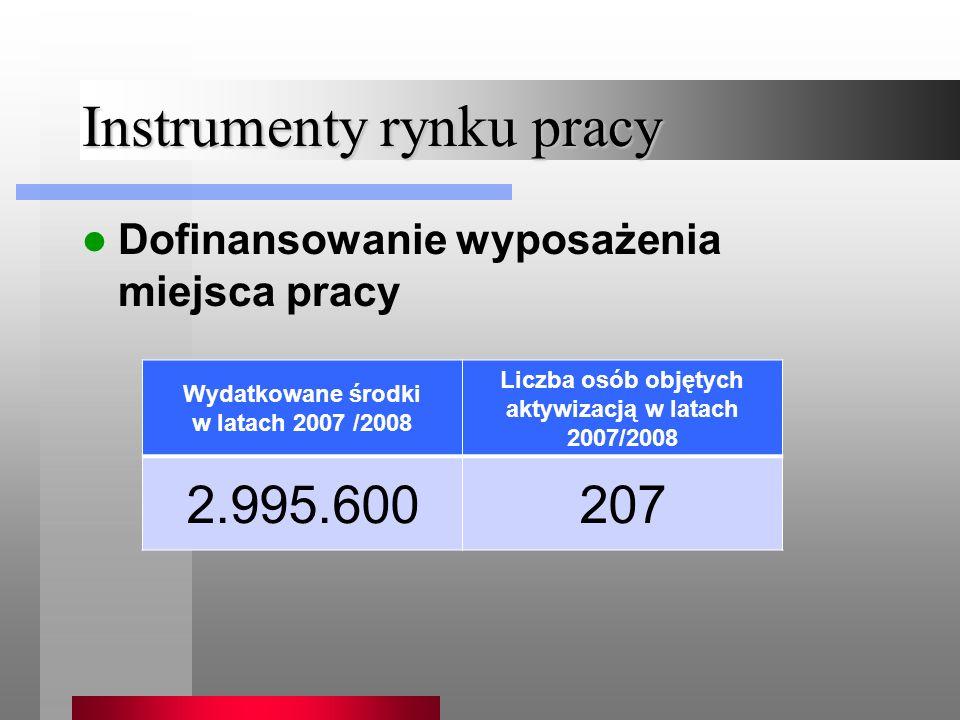Instrumenty rynku pracy Dofinansowanie wyposażenia miejsca pracy Wydatkowane środki w latach 2007 /2008 Liczba osób objętych aktywizacją w latach 2007/2008 2.995.600207