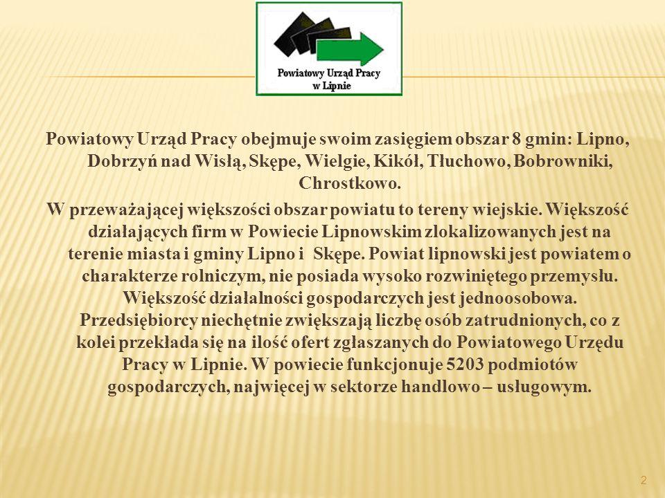 Powiatowy Urząd Pracy obejmuje swoim zasięgiem obszar 8 gmin: Lipno, Dobrzyń nad Wisłą, Skępe, Wielgie, Kikół, Tłuchowo, Bobrowniki, Chrostkowo.