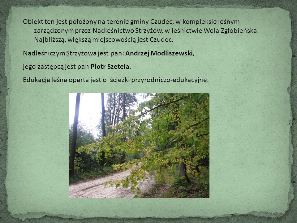 Obiekt ten jest położony na terenie gminy Czudec, w kompleksie leśnym zarządzonym przez Nadleśnictwo Strzyżów, w leśnictwie Wola Zgłobieńska. Najbliżs