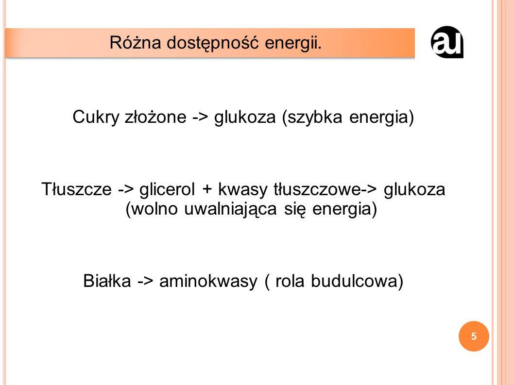 Cukry złożone -> glukoza (szybka energia) Tłuszcze -> glicerol + kwasy tłuszczowe-> glukoza (wolno uwalniająca się energia) Białka -> aminokwasy ( rola budulcowa) Różna dostępność energii.