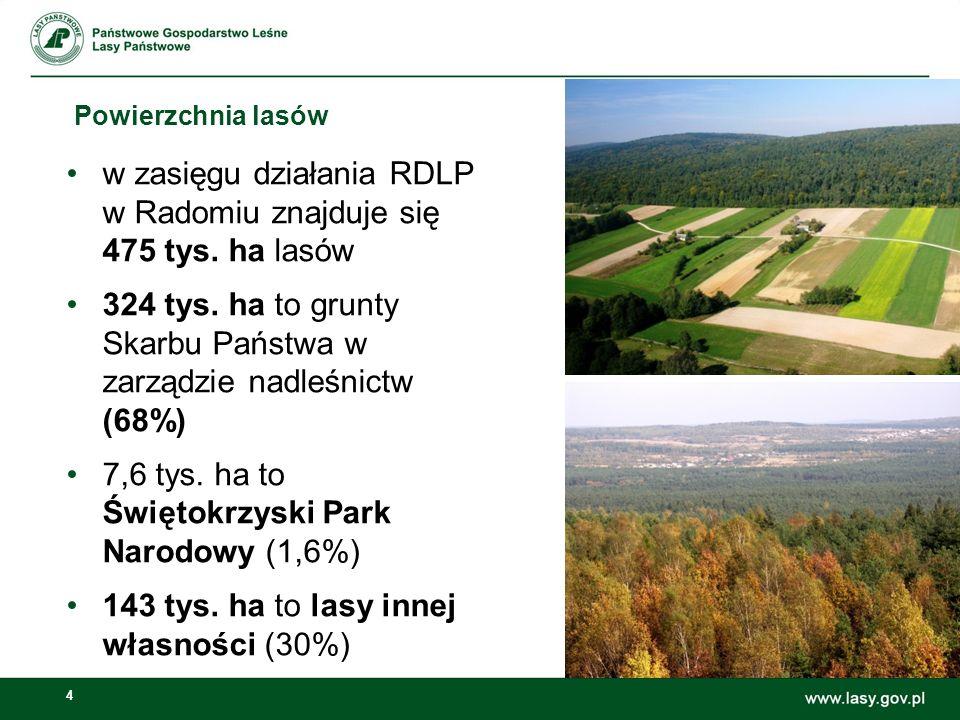 4 Powierzchnia lasów w zasięgu działania RDLP w Radomiu znajduje się 475 tys. ha lasów 324 tys. ha to grunty Skarbu Państwa w zarządzie nadleśnictw (6