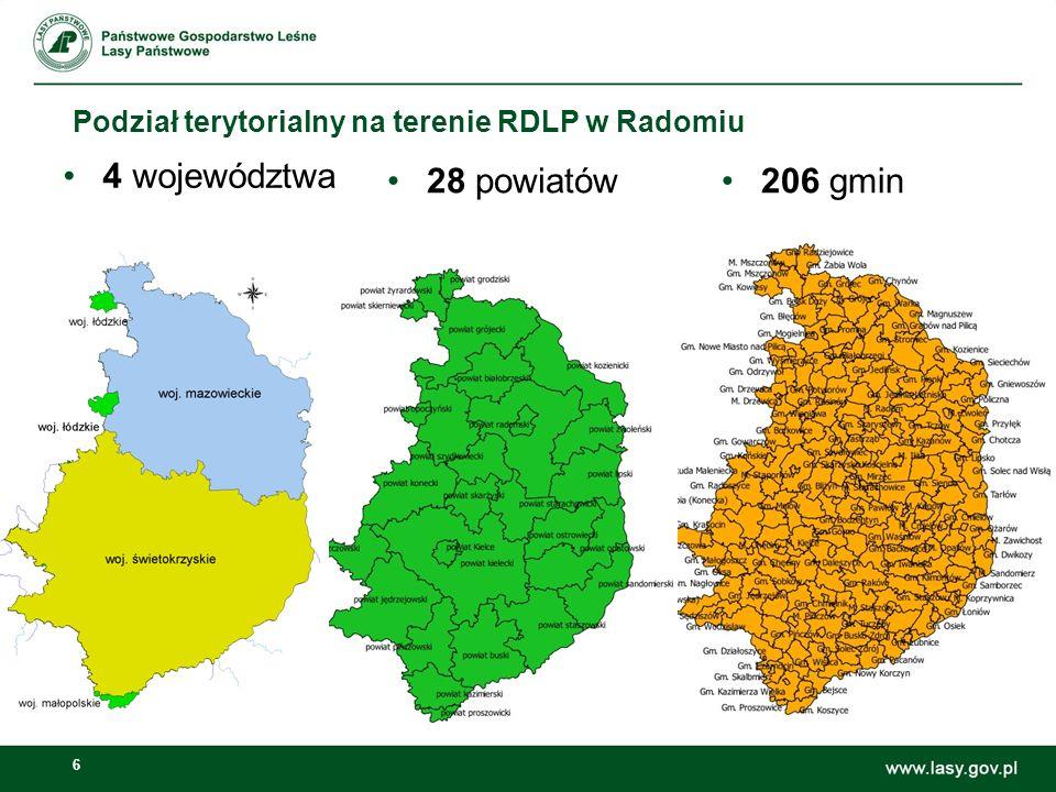 6 Podział terytorialny na terenie RDLP w Radomiu 4 województwa 28 powiatów206 gmin