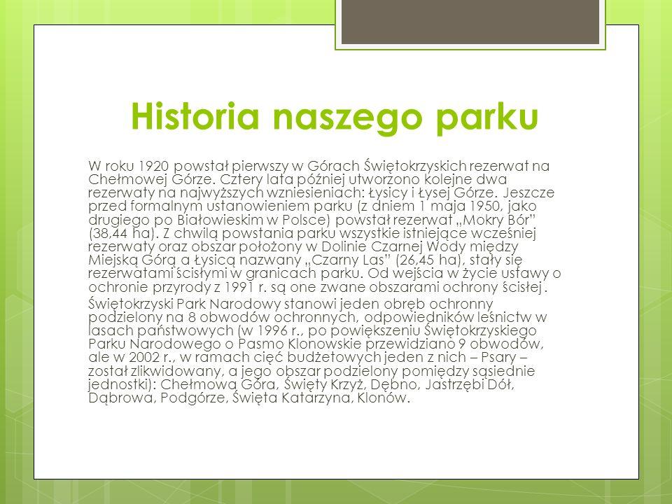 Historia naszego parku W roku 1920 powstał pierwszy w Górach Świętokrzyskich rezerwat na Chełmowej Górze.