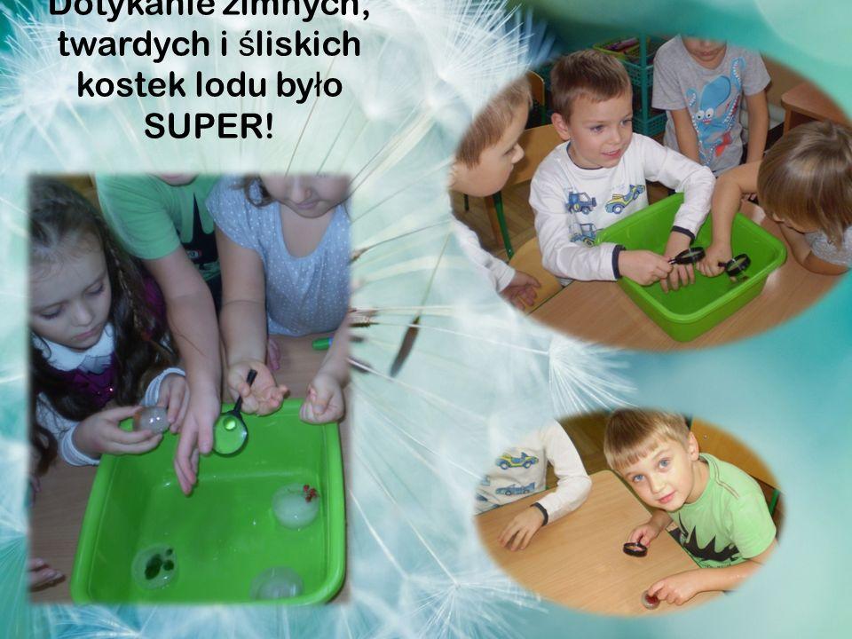 Dotykanie zimnych, twardych i ś liskich kostek lodu by ł o SUPER!