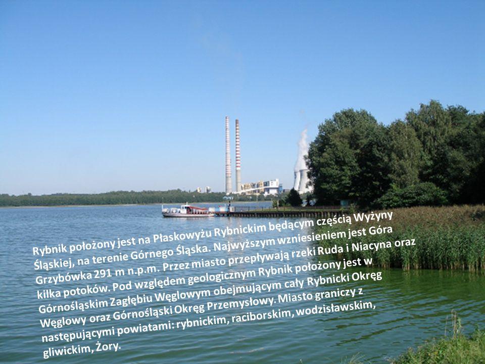 Rybnik położony jest na Płaskowyżu Rybnickim będącym częścią Wyżyny Śląskiej, na terenie Górnego Śląska.