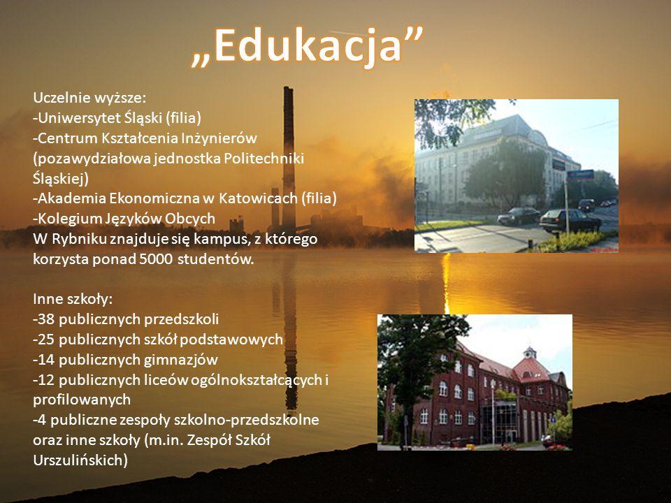 Uczelnie wyższe: -Uniwersytet Śląski (filia) -Centrum Kształcenia Inżynierów (pozawydziałowa jednostka Politechniki Śląskiej) -Akademia Ekonomiczna w Katowicach (filia) -Kolegium Języków Obcych W Rybniku znajduje się kampus, z którego korzysta ponad 5000 studentów.