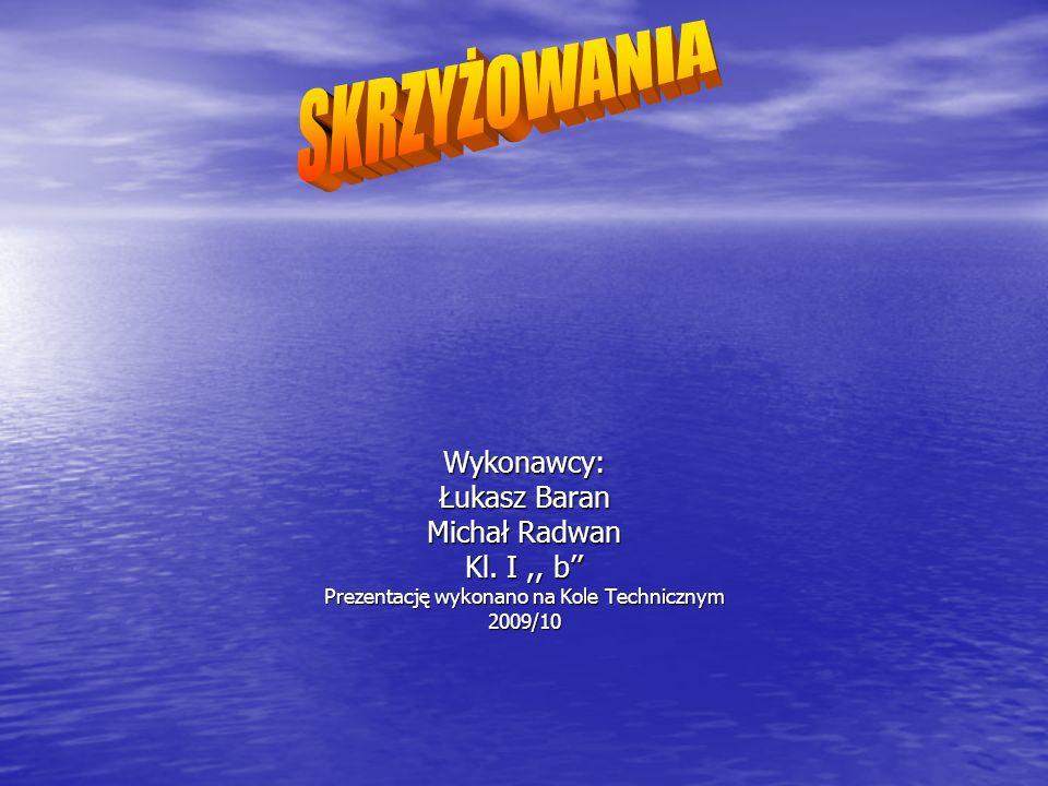 Wykonawcy: Łukasz Baran Michał Radwan Kl. I,, b'' Prezentację wykonano na Kole Technicznym 2009/10