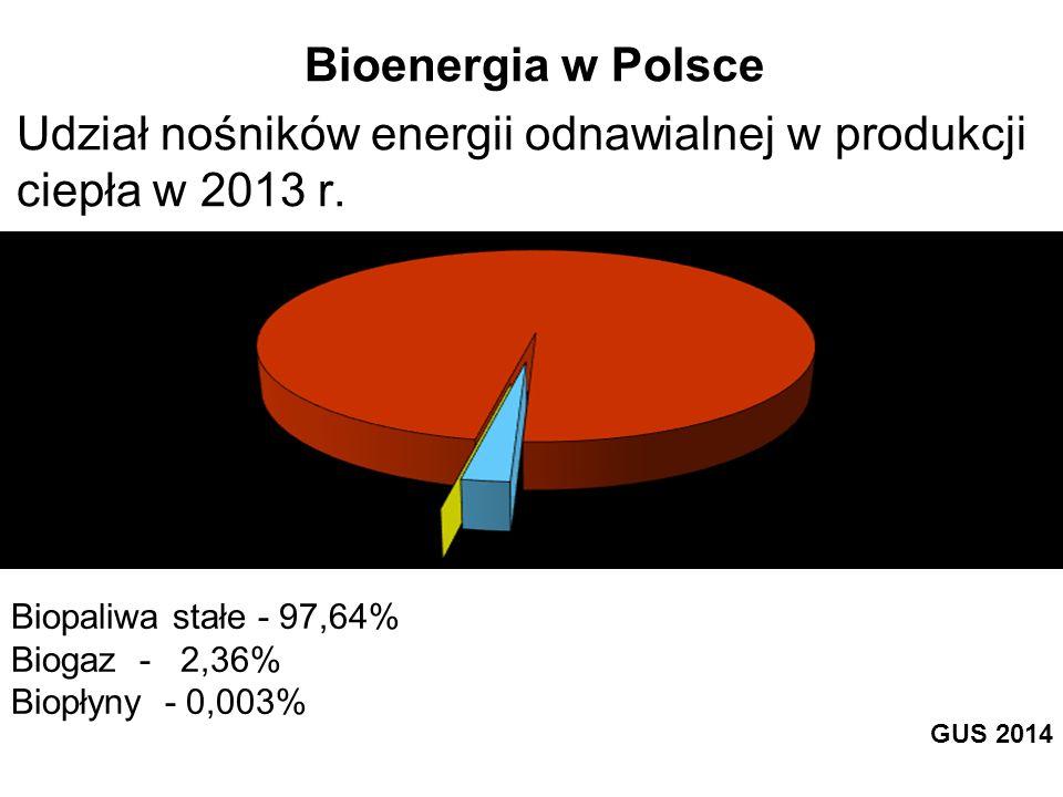Biopaliwa stałe - 97,64% Biogaz - 2,36% Biopłyny - 0,003% Bioenergia w Polsce Udział nośników energii odnawialnej w produkcji ciepła w 2013 r. GUS 201