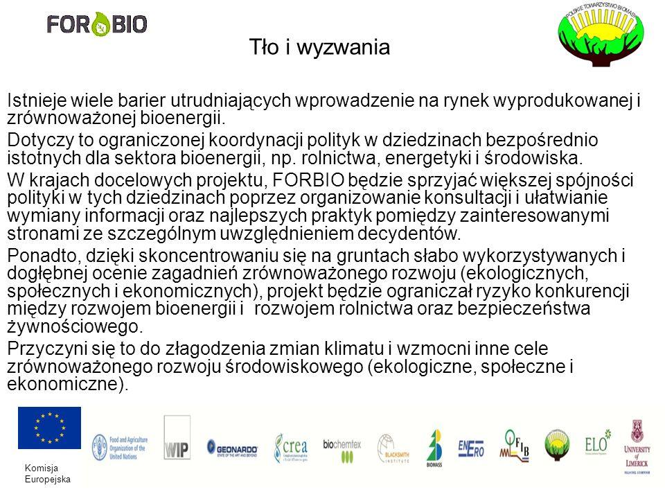 Komisja Europejska Tło i wyzwania Istnieje wiele barier utrudniających wprowadzenie na rynek wyprodukowanej i zrównoważonej bioenergii. Dotyczy to ogr