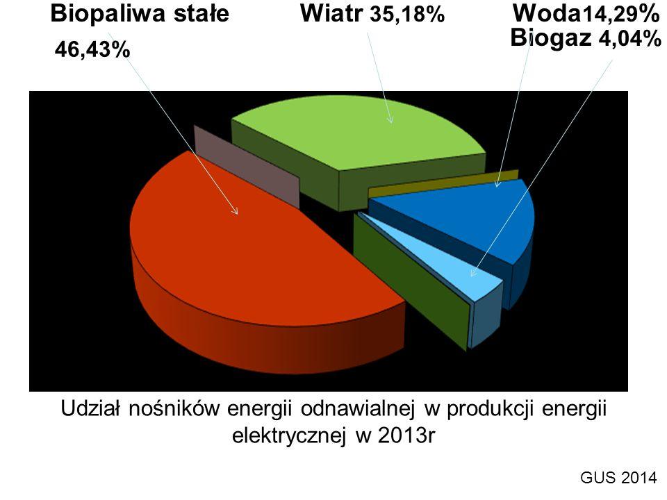 Udział nośników energii odnawialnej w produkcji energii elektrycznej w 2013r GUS 2014 Biopaliwa stałe Wiatr 35,18% Woda 14,29 % Biogaz 4,04% 46,43%