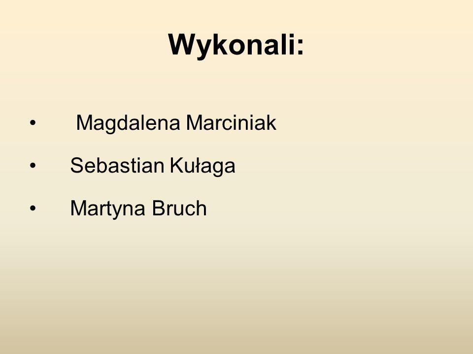 Wykonali: Magdalena Marciniak Sebastian Kułaga Martyna Bruch