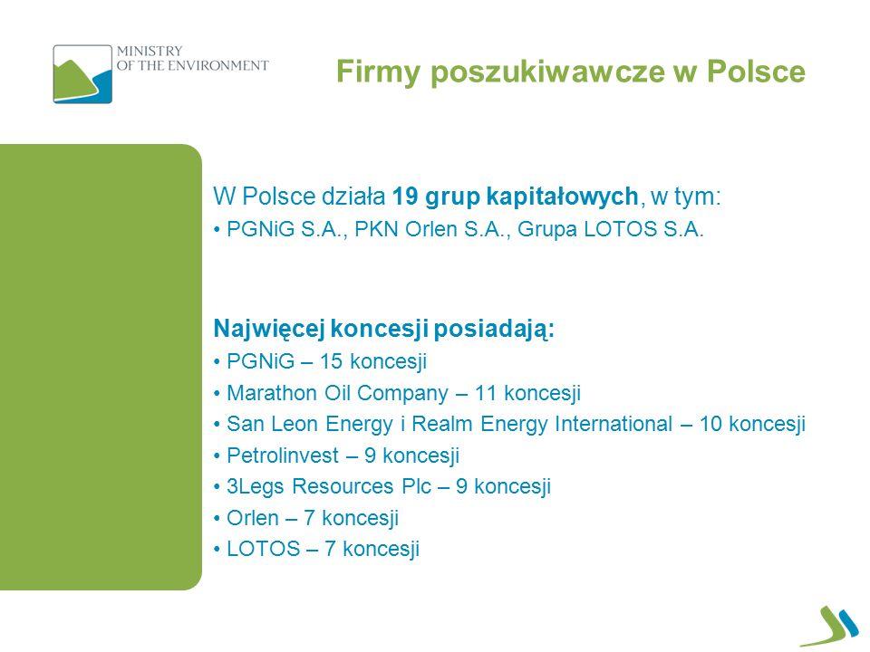 Firmy poszukiwawcze w Polsce W Polsce działa 19 grup kapitałowych, w tym: PGNiG S.A., PKN Orlen S.A., Grupa LOTOS S.A.