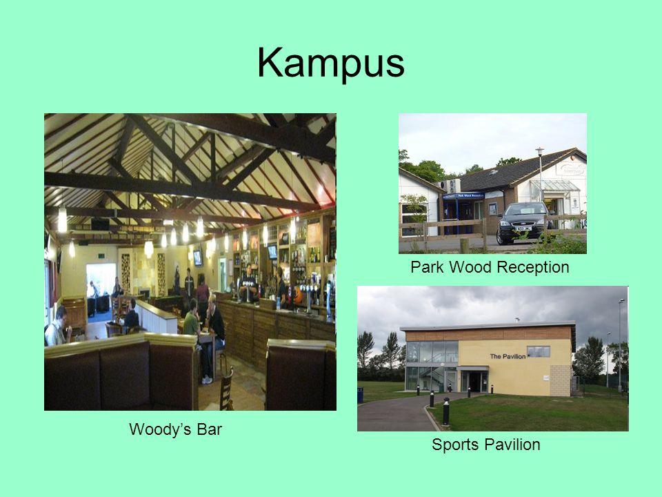 Kampus Park Wood Reception Woody's Bar Sports Pavilion