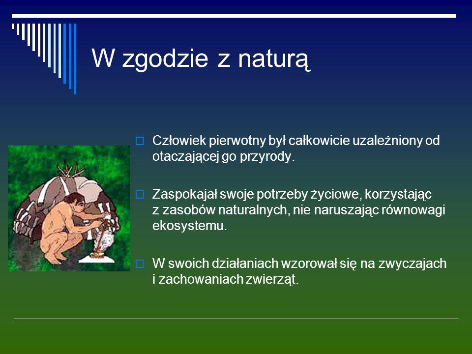 Chemizacja środowiska  Jednym z najpoważniejszych zagrożeń dla zespołów roślinnych i zwierzęcych, a także dla samego człowieka jest chemizacja środowiska.