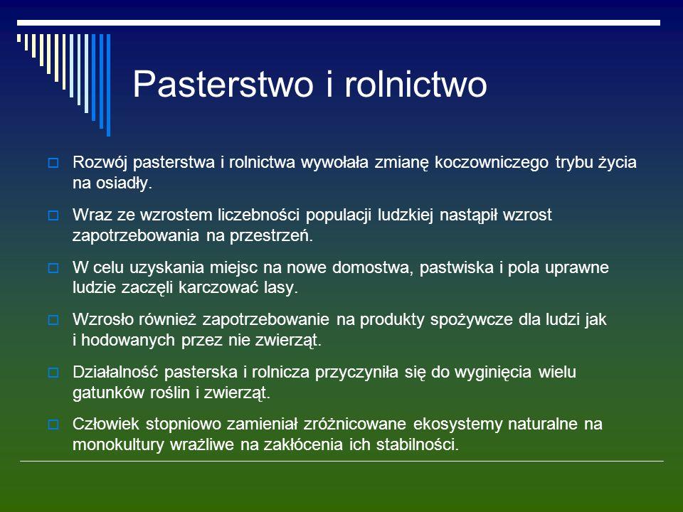 W mieście  Szybko przybywa nowych miast, powiększa się liczba ich mieszkańców.
