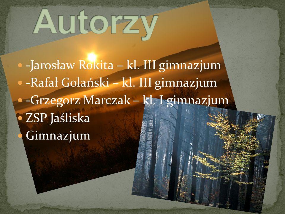 -Jarosław Rokita – kl. III gimnazjum -Rafał Golański – kl.