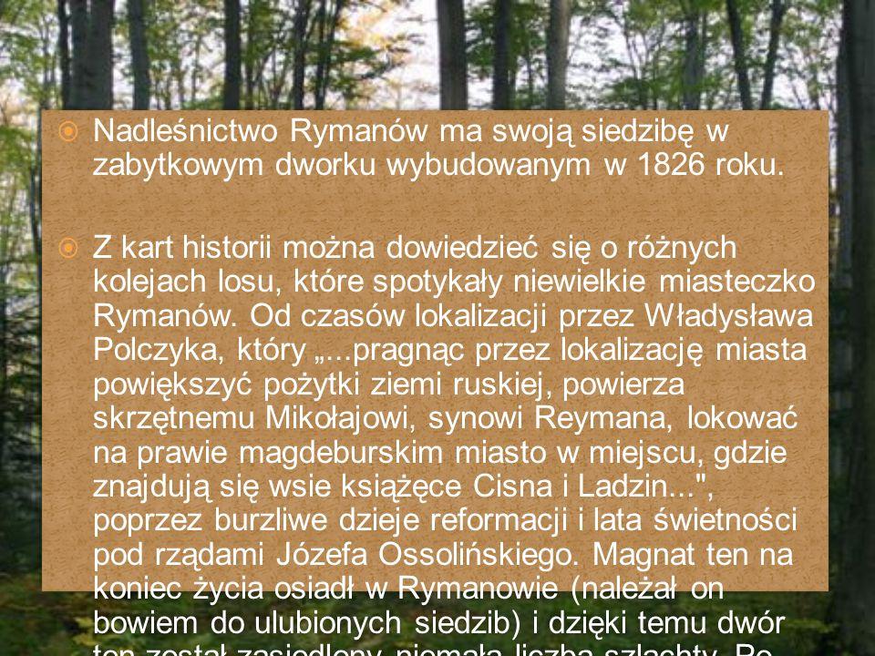  Nadleśnictwo Rymanów ma swoją siedzibę w zabytkowym dworku wybudowanym w 1826 roku.