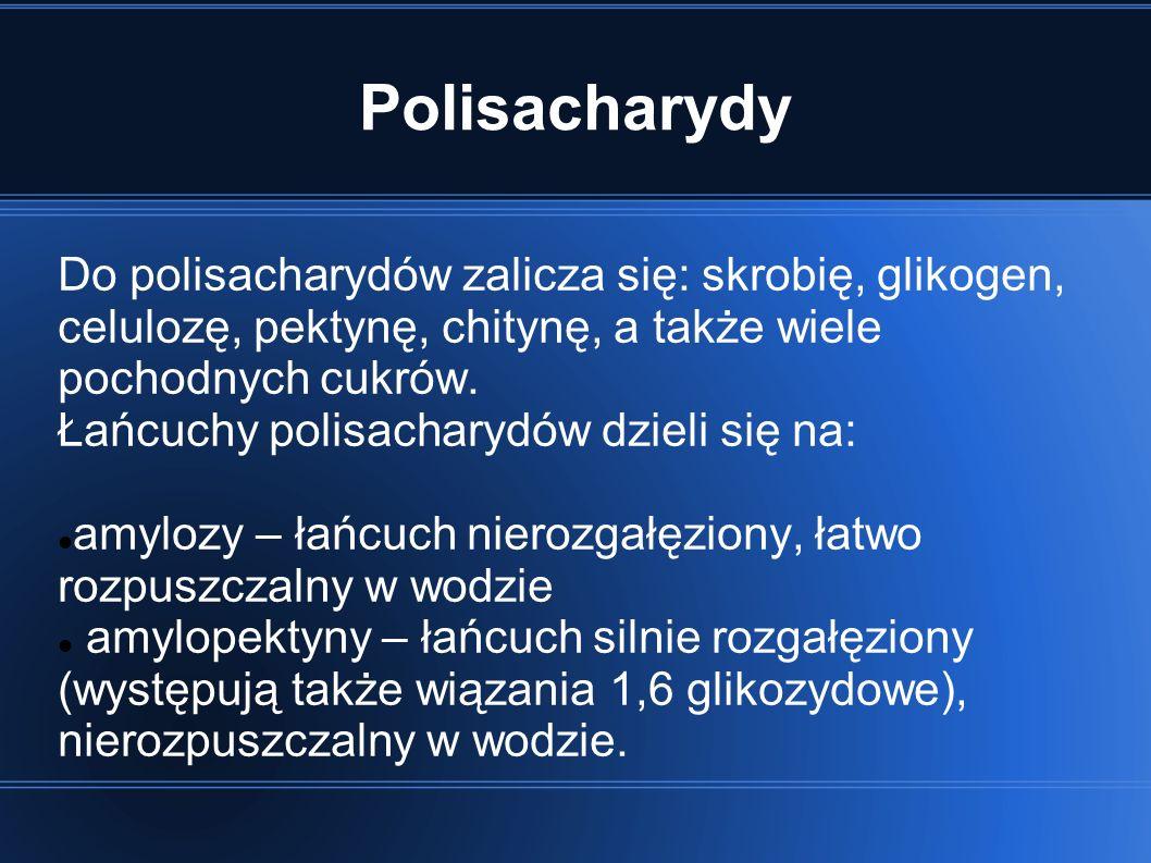 Polisacharydy Do polisacharydów zalicza się: skrobię, glikogen, celulozę, pektynę, chitynę, a także wiele pochodnych cukrów.